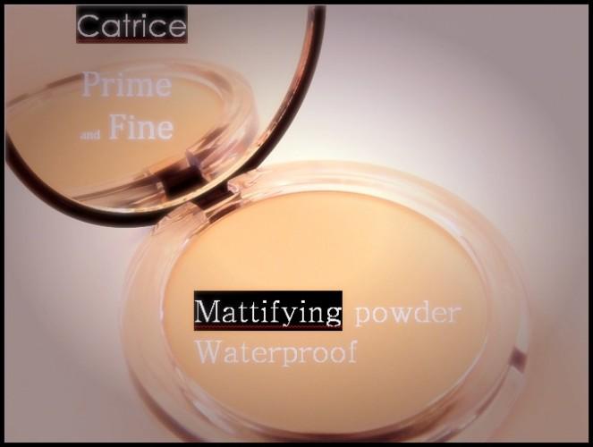Catrice Prime and Fine mattifying powderwaterproof.